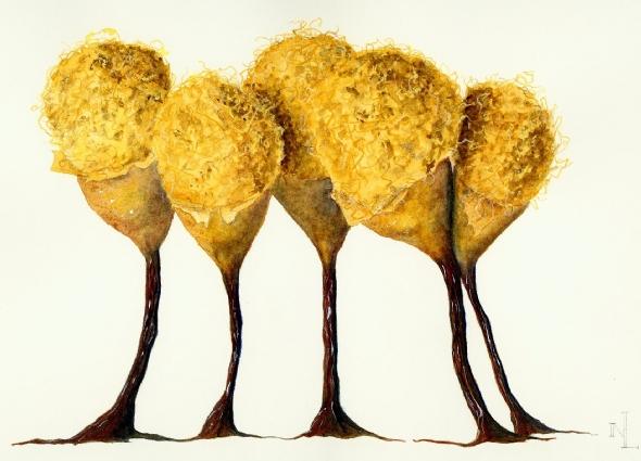 Hemitrichia calyculata, a slime mold