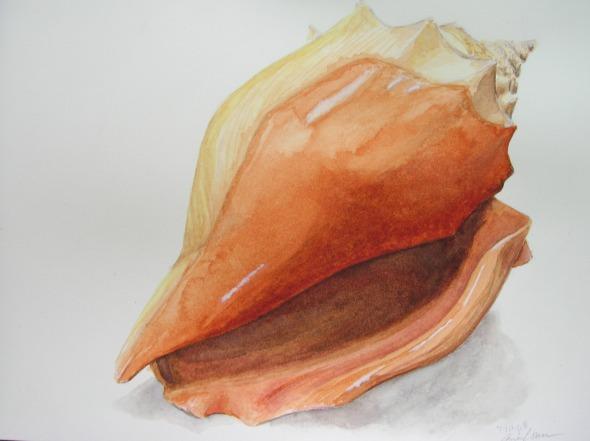 Aira Loren Burkhart's shell